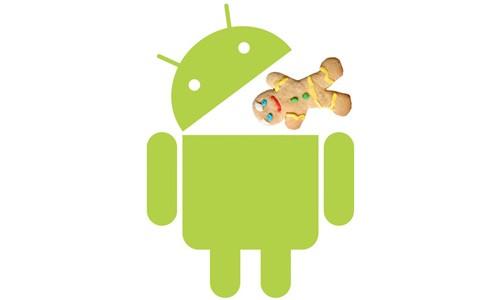 Android Gingerbread 3.0 previsto per la fine dell'anno
