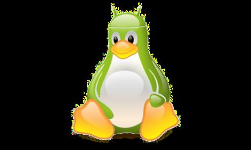 Kernel Linux ed Android: la fusione continua