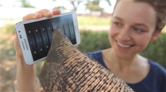 Un elefante utilizza un Galaxy Note: ecco il nuovo spot Samsung