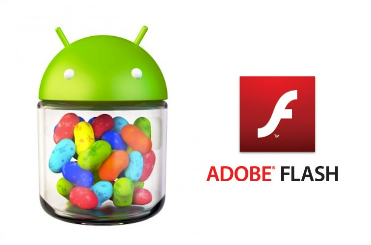 Adobe Flash Player: nuovo aggiornamento da poter installare su Jelly Bean