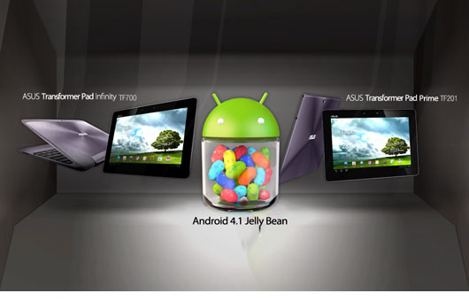 Asus rende disponibili per il download le ROM basate su Jelly Bean del Transformer Prime e Transformer Infinity