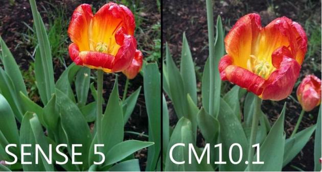 Sense 5.0 vs CyanogenMod 10.1: confronto fotografico