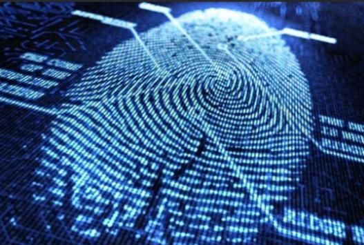 LG potrebbe inserire il sensore di impronte digitali in tutti gli smartphones di punta del 2014