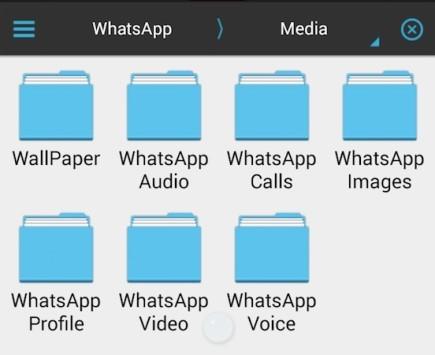 Nuovi indizi per le chiamate Voip in WhatsApp