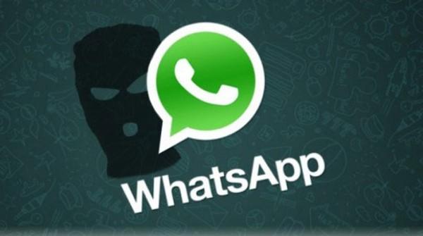 Privacy al sicuro su Whatsapp? Non secondo WhatsSpy Public