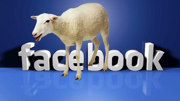 Facebook: gli iscritti torneranno sempre, anche dopo i crash