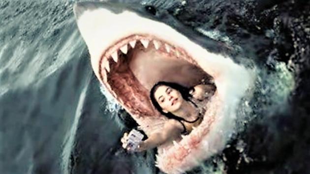 Selfie: un'abitudine che non smette di uccidere