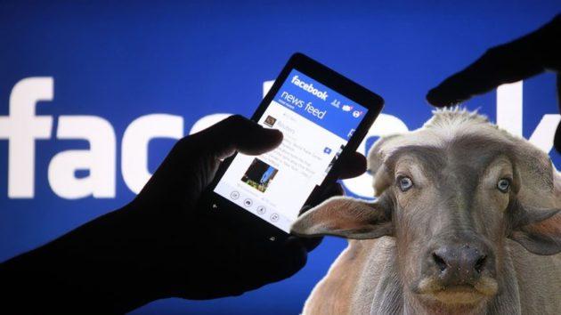 Facebook a pagamento, la bufala continua!