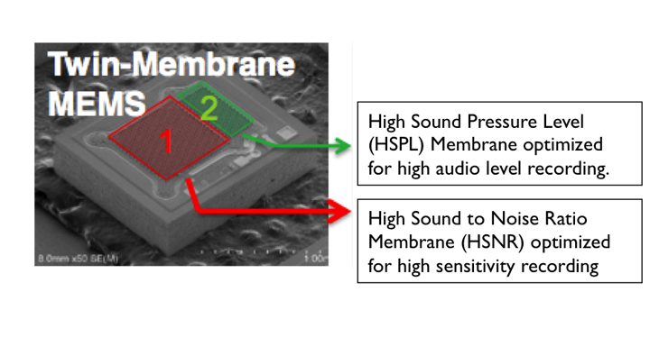Dual-MembraneMics-copy