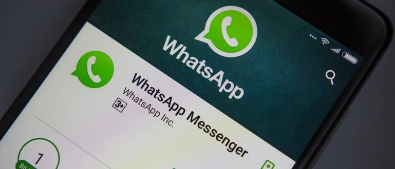 WhatsApp: in arrivo videochiamate di gruppo e sticker